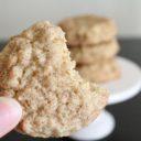 Oatmeal Snickerdoodle Cookies (Oatmadoodle Cookies)