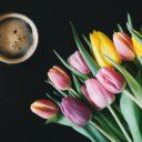 Coffee & Dish #19